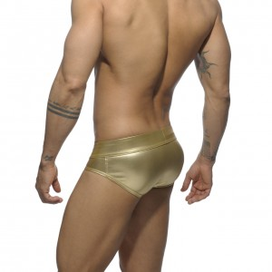 AD543 METALLIC BRIEF
